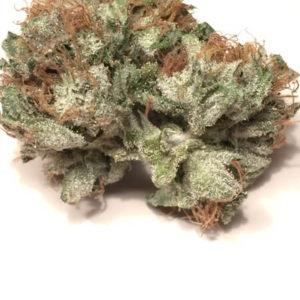 Berry White Cannabis Strain