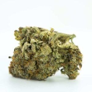 Buy Blackberry Marijuana Strain