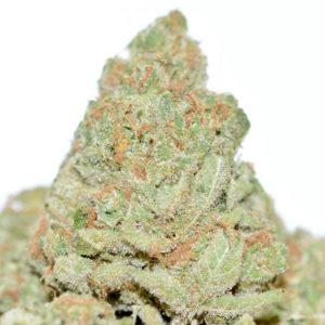 Clementine Marijuana Strain