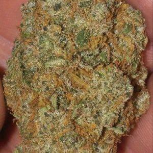 Kali 47 Cannabis Strain