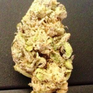 Purple Swish Cannabis Strain