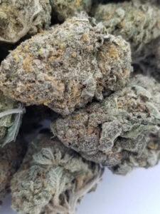 White Rhino Marijuana Strain