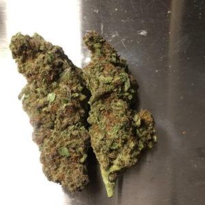 White Russian Cannabis Strain