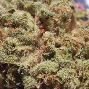 Zkittlez Marijuana Strain