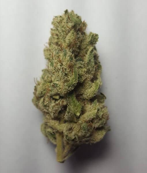 BTY OG Cannabis Strain