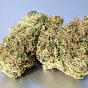Brownie Scout Marijuana Strain