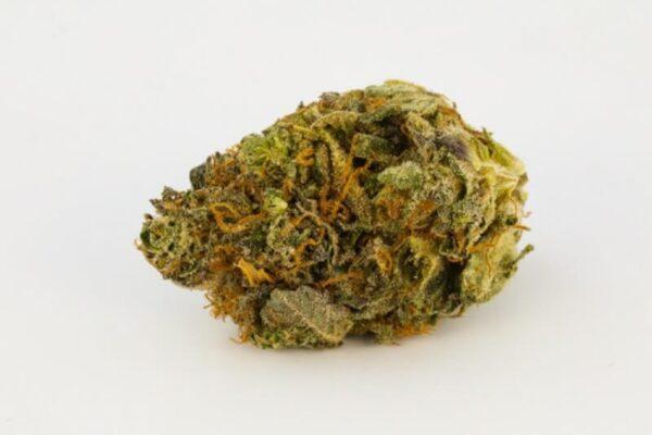 Gelato Dream Weed Strain