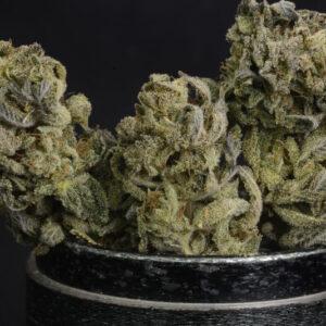 Granola Funk Cannabis Strain